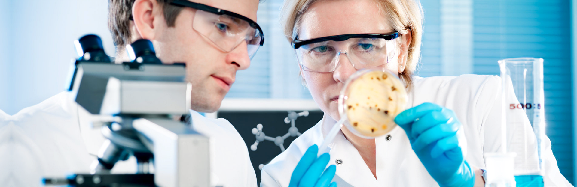 Two scientists looking at the experiment